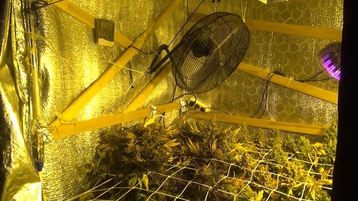ВВологде гражданин многоэтажки построил вквартире теплицу для конопли