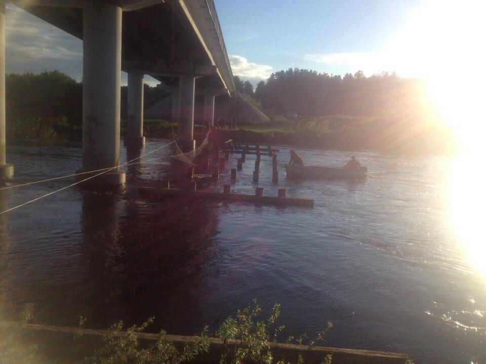 ВТарноге установили сетки для поисков 9-летней девушки, унесенной рекой
