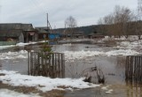 Из-за паводка несколько семей в Вологодской области покинуло свои дома
