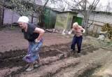 Череповецких дачников проинструктировали, как выжить на огороде