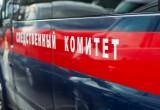 Череповецкий следственный отдел СУ СК проводит расследование убийства восьмилетней девочки