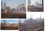 12 домов сгорело из-за пала сухой травы в вологодской деревне