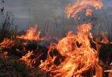 За три недели 200 травяных пожаров произошло в Вологодской области