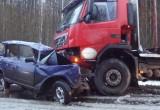 За десять дней инспекторы ГИБДД «отловили» более 250 нетрезвых вологжан-водителей