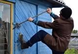 В Тарногском районе полицейские поймали дачных воров