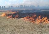 Регион переходит на особый противопожарный режим