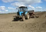 В Вологодской области посевные площади вырастут  до 390 тысяч гектаров