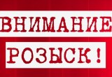 Двое туристов из Санкт-Петербурга пропали в Вытегорском районе