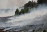 В Вологодском районе на торфяниках беспилотник засек поджигателей