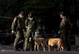 Россиян просят воздержаться от одиночных поездок по Тайланду и Тунису
