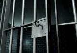 Череповецкий педофил осужден за изнасилование девочки
