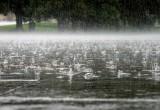 Прогнозы обещают Вологде два дня дождей, а затем потепление