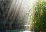 День России вологжанам могут подпортить дожди