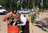 Клумбы в виде расписных бочек появились в центре Вологды в честь 870-летия города