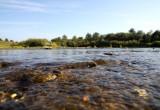 Поиски 9-летней девочки, упавшей в реку Кокшеньгу, завершены
