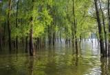 Вологодской области угрожают паводки на реках