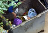 В селе Сямжа неизвестные украли мусорный контейнер