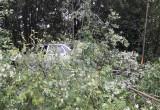На трассе под Устюжной умер за рулем водитель «Приоры»