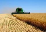 На Вологодчине из-за дождей могут ввести режим ЧС по сельскому хозяйству