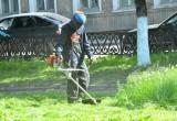 В Вологде второй раз косят траву на газонах