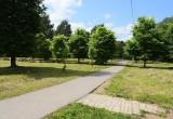На следующей неделе в Вологде начнут благоустраивать Ковыринский парк