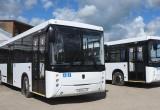 На маршруте № 9 в Вологде запустят два новых автобуса