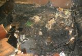 В расселенном доме Вологды заживо сгорел бывший хозяин квартиры
