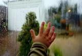 Дождями и похолоданием встретят выходные вологжан