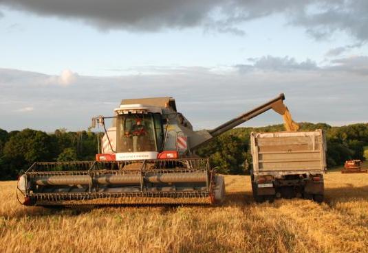 Вологодская область будет закупать зерно у южных регионов