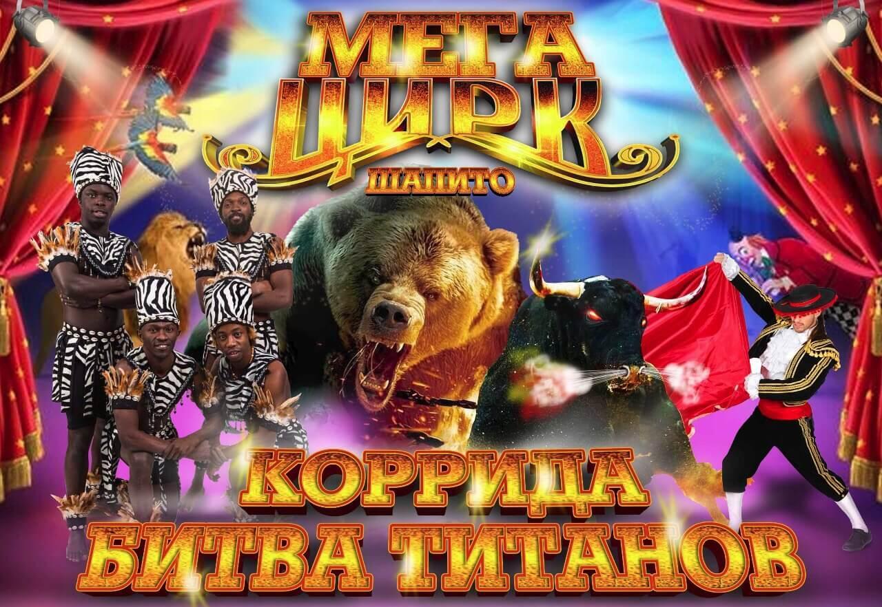 Выступления МЕГА ЦИРКА в Вологде продолжаются!