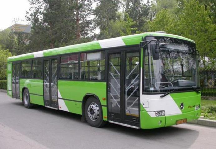 16 сентября в Вологде изменят автобусные маршруты из-за «Кросса нации»