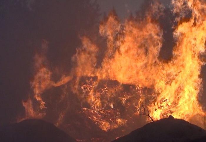 На пожаре в Соколе погибли женщина и 4-летний ребенок