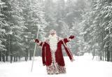В День рождения Дед Мороз запустит Новогоднюю сказку