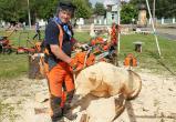 Вологодскую «резню бензопилой» покажут на Первом канале (ФОТО)