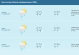 До середины недели в Вологде будет облачно и дождливо