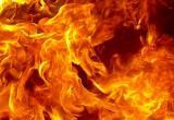 Два деревянных дома сгорели в воскресенье в Вологодской области