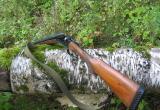 В Архангельской области местный житель застрелил вологжанина