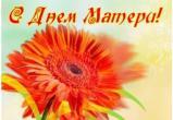 В День матери 43 многодетные матери Вологодчины получат Медали материнства