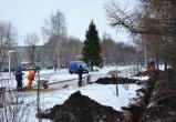 Проспект Победы в Вологде станет светлее