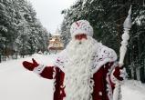 Российский Дед Мороз расплачивается только шишками