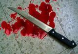 В Грязовецком районе мужчина получил срок за убийство ревнивой сожительницы