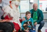 Великоустюгский Дед Мороз подарил щенка боксера сироте из-под Саратова