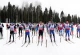 Вологодские лыжники поборются за победу в марафоне на Комеле