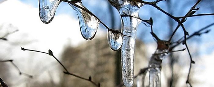 В предстоящие выходные дни в регионе потеплеет