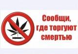 """Акция """"Сообщи, где торгуют смертью"""" стартовала в Вологде"""