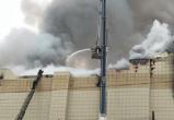 Кемеровские активисты заявили о 85 без вести пропавших после пожара в ТРЦ «Зимняя вишня»