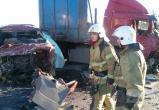 Стали известны новые подробности ДТП с семью погибшими под Череповцом
