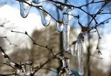 Синоптики обещают вологжанам апрельский снег на выходных