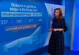 В Вологде в выходные ожидается аномально дождливая погода (ВИДЕО)