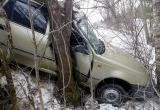 Иномарка «Дэу Нексия» врезалась в дерево под Вытегрой, есть пострадавший